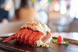 Maine Lobster_blog