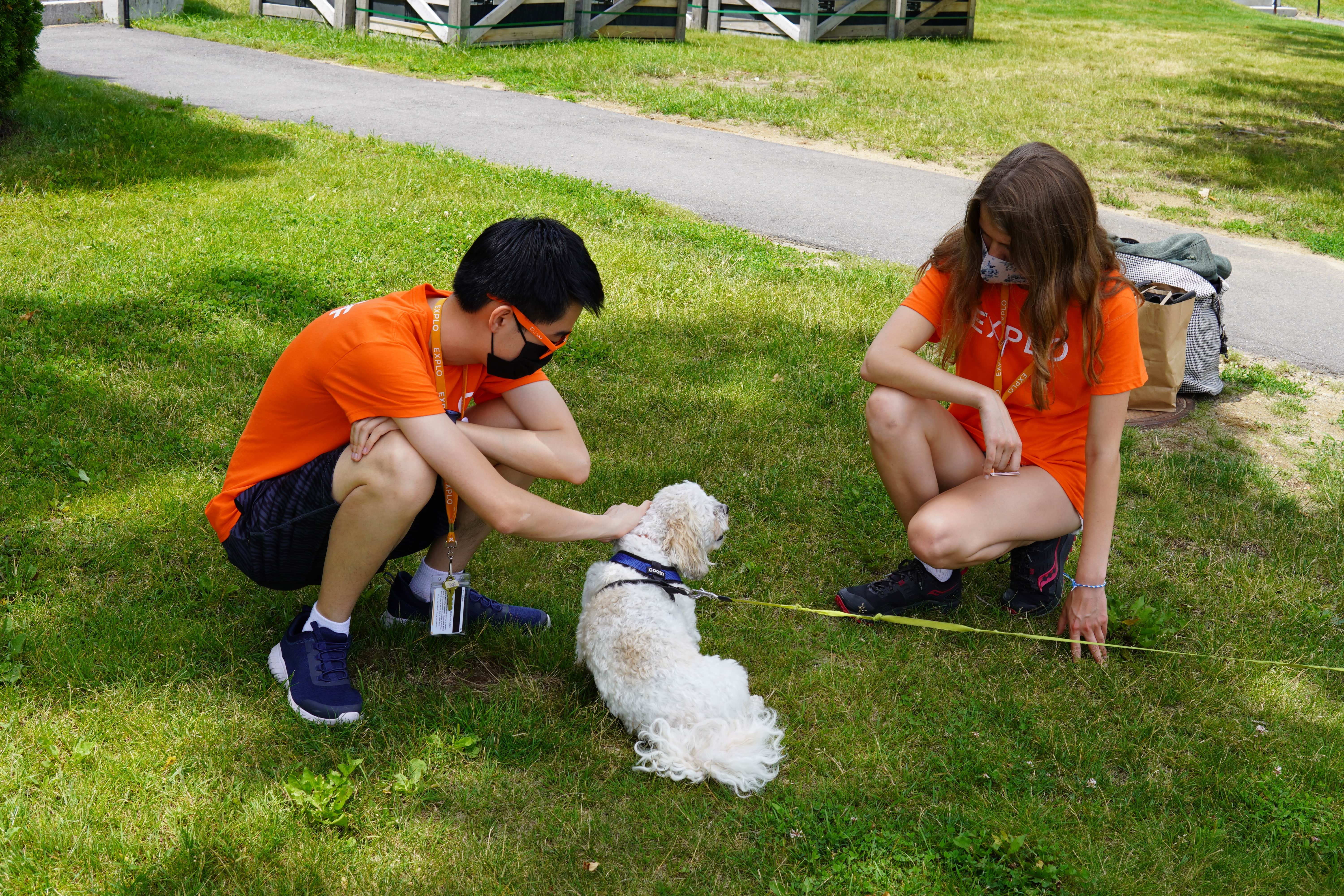 A dog says goodbye to a student, and staff take the opportunity to pet it in the shade.